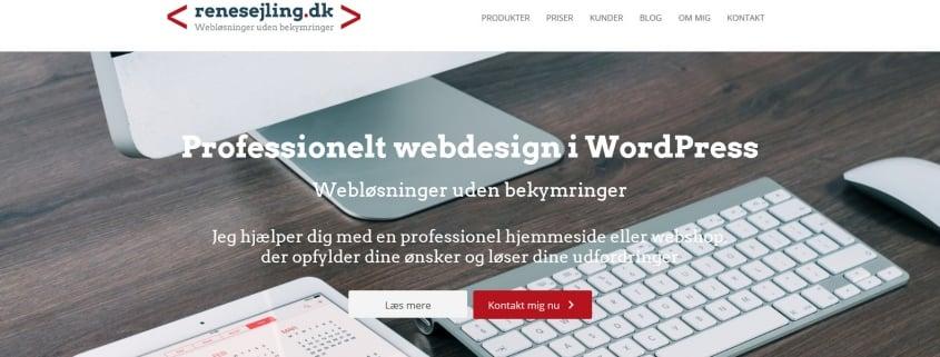 Webdesigner - Professionelle hjemmesider og webshops - WPIndex.dk