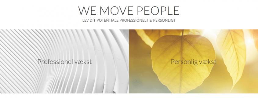 Personlig og professionel raadgiver Vaekst mentor maloustorm com WordPress Website WPIndex